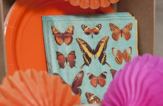 BUTTERFLY DAY - bodegones_alta_hasd_142